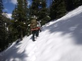 A Narrow trail