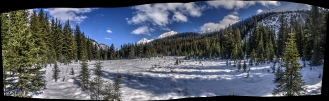 Baker Creek Horse Camp Meadow