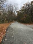 Road in Stokes